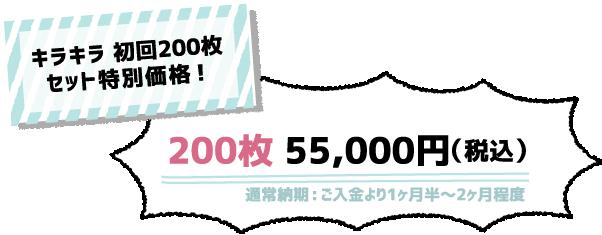 ark Design WEBサイトRENEWAL記念!200枚41,000円(税恋))