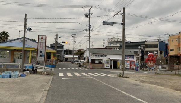 日間賀島に行ってきました🐙🐡🐟💕